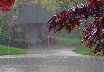 اهنگ باران عشق من همش صدات میپیچه تو گوشم,پرسه تو کوچه